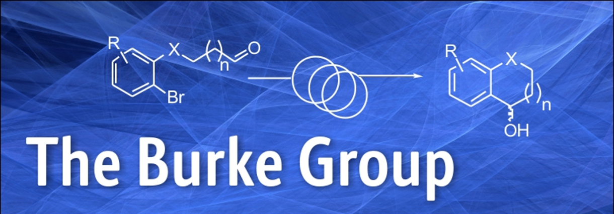 The Burke Group